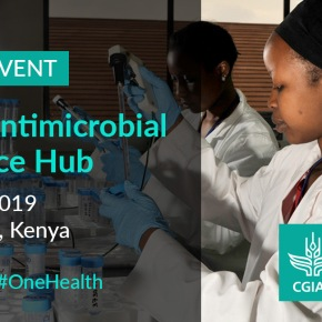 Launching today—CGIAR Antimicrobial ResistanceHub